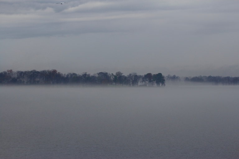 landscape picture over cross lake in shreveport of fog